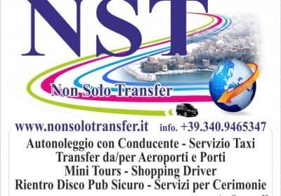 Agenzia/operatore Turistico Nst Taxi Transfer
